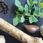 Examples of antibacterial foods, including garlic, honey, oregano, horseradish, clove, ginger, and lapacho.