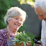 Senior couple gardening in backyard.